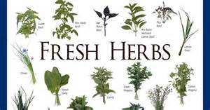 i herbal picture 3