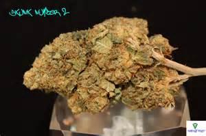 how to smoke marijuana for sleep picture 4