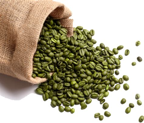 can green coffee beans give u a bladder picture 4