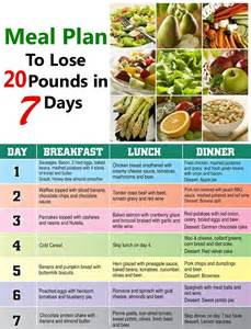 diet plan to lose 12 pounds picture 3