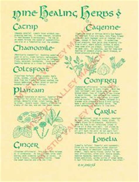 wiccan herbs and their meanings picture 13