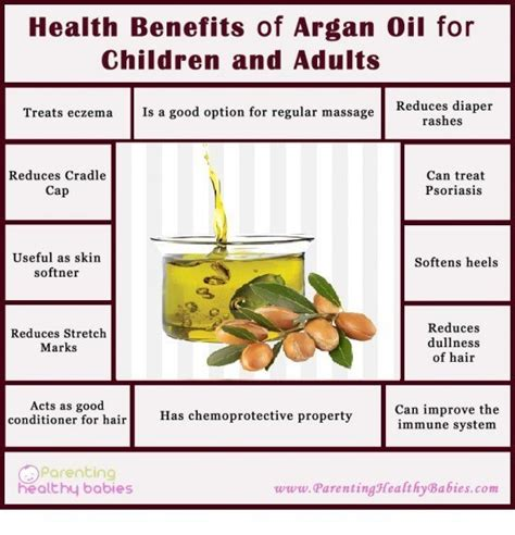 argan tree nut picture 13