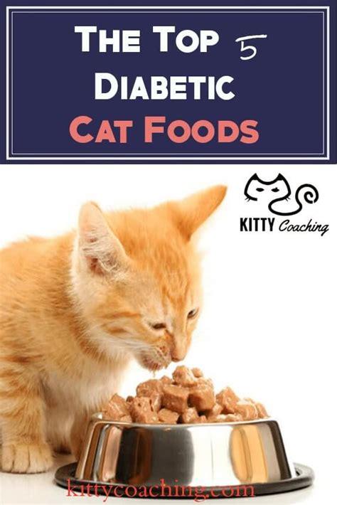 diabetic cat food recipe picture 10