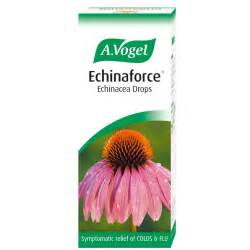 echinacea research picture 7