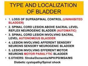 bladder disorders lacking sphincter picture 15