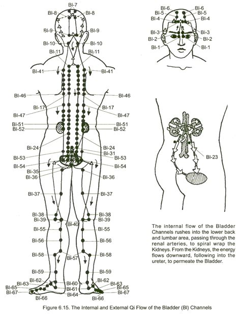 back pain after cystourethrography with bladder intention picture 11