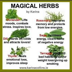 legal natural herb or plant that works like picture 15