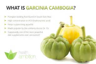 where can u buy primalite garcinia cambogia in picture 6