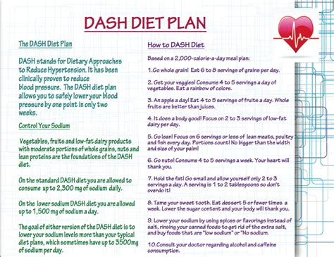 weight loss on the go diet plan picture 2