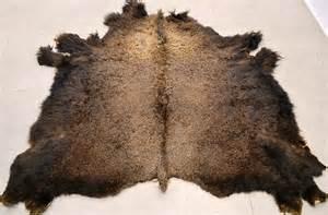 buffalo skin picture 7