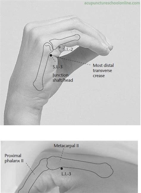 acupressure points for si joint paon picture 8