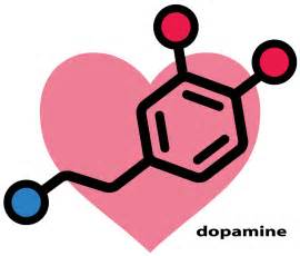 natural dopamine releasers picture 6