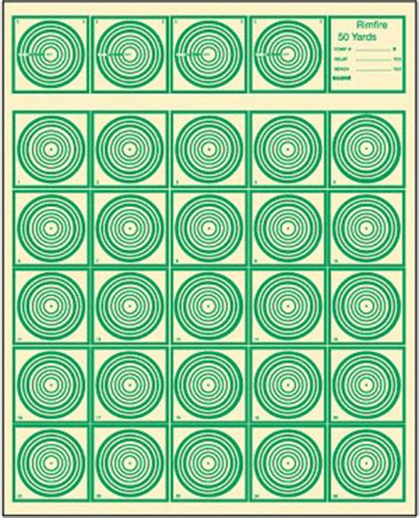 ibs 50 yard rimfire target picture 2
