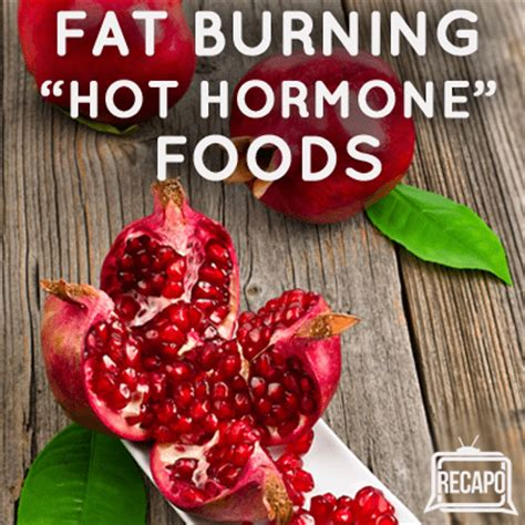 fat burning hormone picture 1