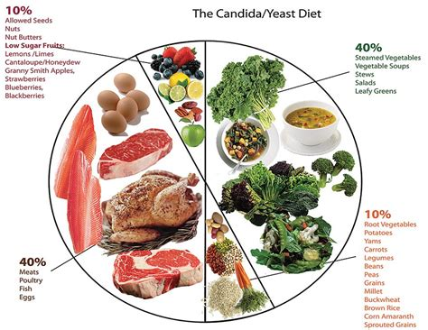 daily foods to eat on candida diet picture 6