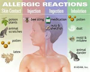 major allergic skin reaction pictures picture 11