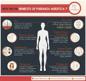 pueraria mirifica effects on men picture 3