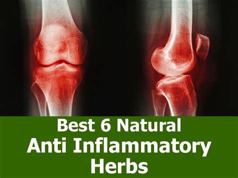 herbal anti inflammatory picture 2