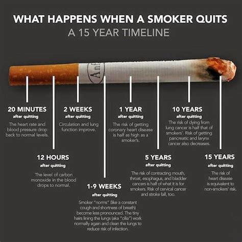quit cigarettes smoking pictures picture 4