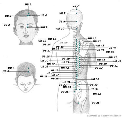 acupressure points for bladder spasms picture 9