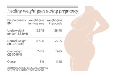 weight gain during your first trimester picture 2