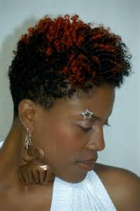 afro american twist styles for hair picture 7