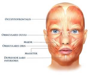 face exerciser for lose skin picture 15