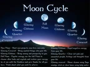 wiccan herbs and their meanings picture 11