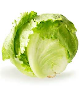 iceberg lettuce digestion picture 13