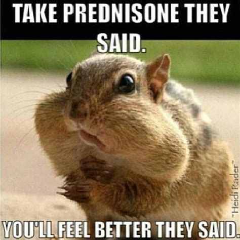 Prednazone and weight gain picture 2