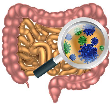 colon infection picture 6