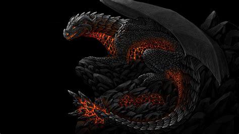 dragon picture 14