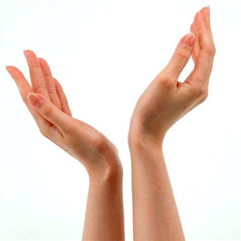 Beautiful Hands and Arms on rapidshare picture 12