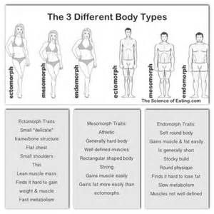 diet by body type picture 2