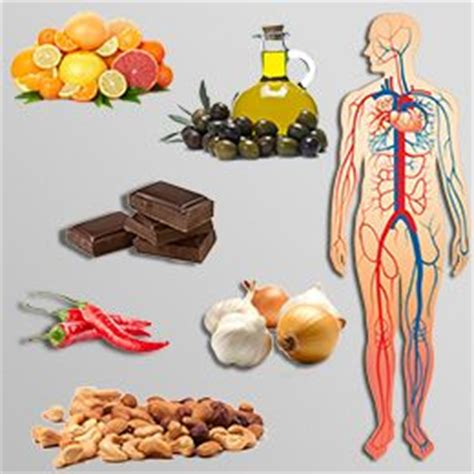 foods to promote blood circulation picture 11
