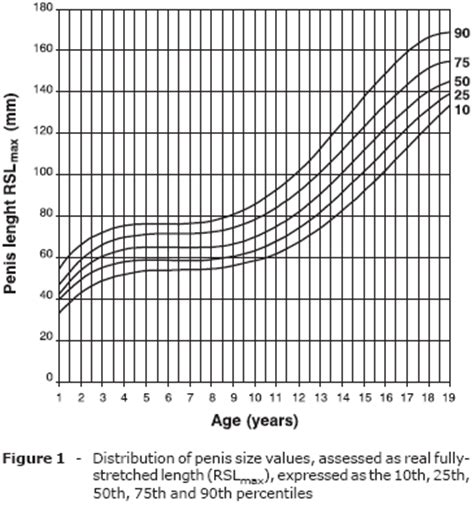 aging penis size picture 13