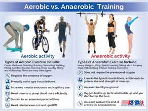 aerobics or resistance excercises for weight loss done daily picture 6