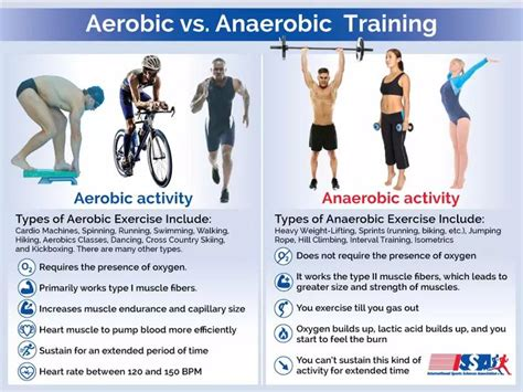 aerobics or resistance excercises for weight loss done daily picture 3