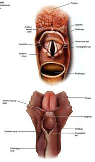thyroid and choking picture 19