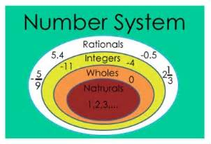 hoodia what is amount in system picture 7