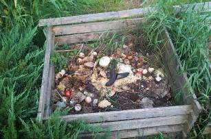 compost piles picture 3