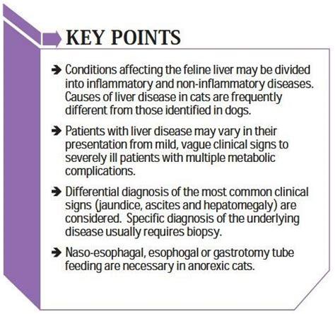 feline liver disease picture 9