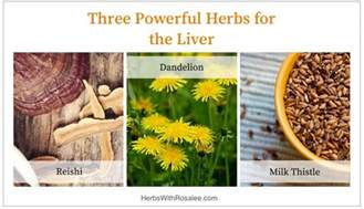 herbs for liver cleansing picture 11