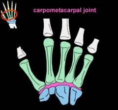 cmc joint picture 11