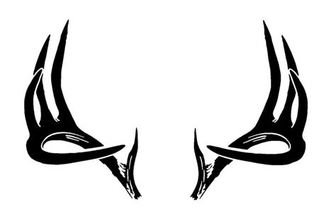 deer antler and big s picture 3
