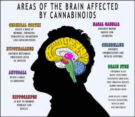 what are the effects of almoranas in the picture 11