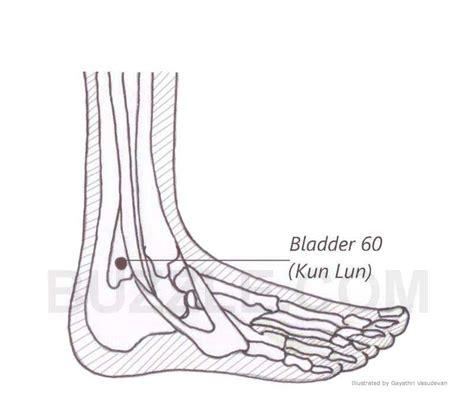 acupressure points for bladder spasms picture 1