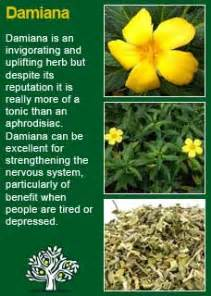 happy king herbal side effect picture 14