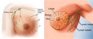 can you get breast cancer by sleeping on picture 14