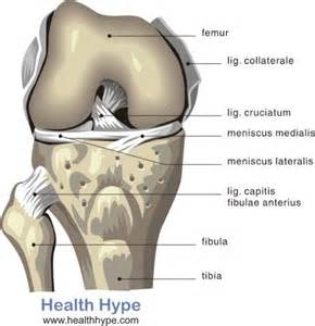 clicking in knee joint picture 1